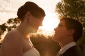 Gay Bride and Groom Outdoors — Stock Photo