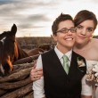 Same Sex Newlyweds with Horse - Stock Photo