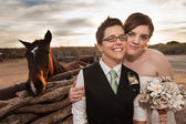 Same Sex Newlyweds with Horse — Stock Photo