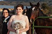 馬の近く結婚同性愛者のカップル — ストック写真