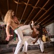 Постер, плакат: Capoeira Performers Working Out