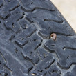 Stock Photo: Tire with nail