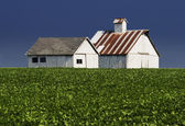 Farm Buildings — Stock Photo