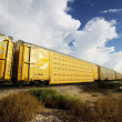 Train at the Crossing — Stock Photo #39445085