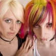 Stock Photo: Girls with Bright Hair
