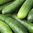 Stock Photo: Cucumbers