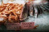 Fish in ice at a market — Stock Photo