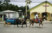Horses in Downtown Santa Elena — Stock Photo