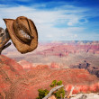 Stock Photo: Hat hung on branch near Grand Canyon