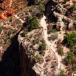 Hikers on Bright Angel trail in the Grand Canyon — Stock Photo