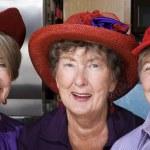 Three Senior Women Wearing Red Hats — Stock Photo #39769379