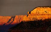 Grand Canyon Detail — Stock Photo