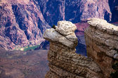 Rocky Outcropping Above Colorado River in Grand Canyon — Stock Photo