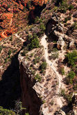 Hikers on Bright Angel trail in the Grand Canyon — Foto de Stock