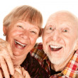 Happy senior couple — Stock Photo #40080533