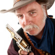 Cowboy with pistol — Stock Photo #40316255
