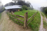 Costa Rican dairy farm — Stock Photo
