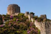 Rumelian Castle — Stock Photo