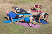 Diverse Group Doing Push-Ups — Stok fotoğraf