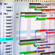 Close up shot of a detailed Gantt Chart that illustrates a project — Stock Photo #31064933