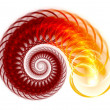 Colorful Spiral Background Digital fractal — Stock Photo #32247923