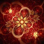 Dark red fractal flower focus — Stock Photo