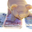 Piggy bank and money — Stock Photo