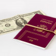 Spanish passport and dollar bill - Stock Photo