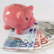 Piggy bank about Euro banknotes — Stock Photo