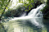 Waterfall with silky effect — Stock Photo