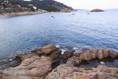 Tossa de mar — Foto Stock