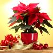 Beautiful poinsettia in flowerpot, gifts and Christmas balls on wooden table on yellow background — Stock Photo #10803181