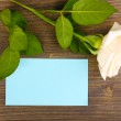 Beautiful rose on wooden backgground — Stock Photo #11512027
