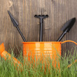 Green grass and garden tools on wooden background — Stock Photo #12322393