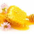Golden honeycombs, wildflowers and wooden drizzler with honey isolated on w — Stock Photo #12567084