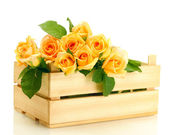 Beautiful bouquet of roses in wooden box isolated on white — Stock Photo