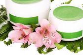 Jars 的奶油和蕨类植物特写的分支上的花 — 图库照片