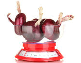 Red onion in a kitchen scales isolated on white background — Stock Photo