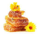 Sweet honeycomb with honey, bee and flowers, isolated on white — Стоковое фото