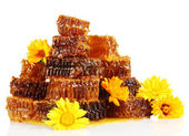 Sweet honeycombs with honey and flowers, isolated on white — Stock Photo