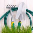 Green grass and garden tools on wooden background — Stock Photo #12574901