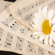 Musical notes and flower on wooden table - Stockfoto