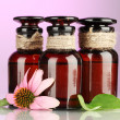 Medicine bottles with purple echinacea, on pink background - Stock Photo