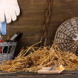 Royalty-Free Stock Photo: Mousetrap with a piece of cheese in barn on wooden background