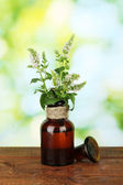Essential oil and mint on green background close-up — Stock Photo