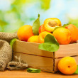 Ripe apricots with leaves in wooden box on wooden table on green background — Stock Photo #12613697