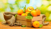 Ripe apricots with leaves in wooden box on wooden table on green background — Stock Photo