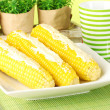 Boiled corn with butter on a green background - Stock fotografie