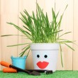 A pot of grass on wooden background — Photo