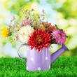 Purple watering cwith white polka-dot with flowers on green background — Stock Photo #12646448